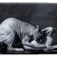50 Shades Of Sphynx IPhone 6s Case