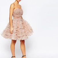 True Decadence Petite Rosebud Bodice Layer Prom Dress at asos.com