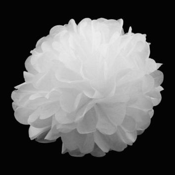 ac VLXC 10pcs/set 15cm(6') Wedding Decorative Props Supplies Tissue Paper Pom Poms Wedding Party Festival Decoration