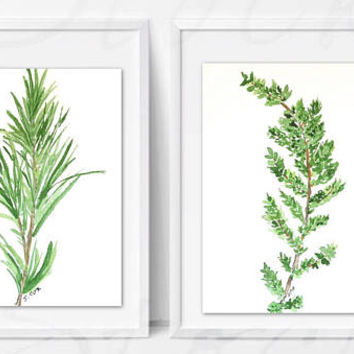 Herb Painting Print Set, Kitchen Art Print, Original Watercolor herbs, matching wall art, watercolor painting, Rosemary & Thyme, sold as set
