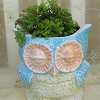 Owl Planter or Canister Vintage Design Home Decor Kitchen or Bath READY TO SHIP