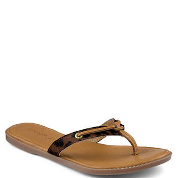 Sperry Top-Sider Calla Thong Sandals
