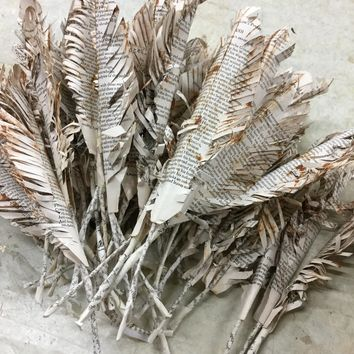 Storybook Feathers