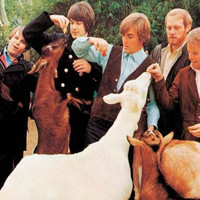 Beach Boys Pet Sounds Album Cover Poster 11x17
