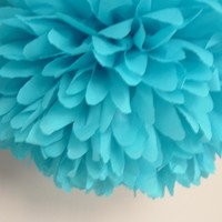 Bridal shower, birthday party, wedding, window display...Set of 12 poms
