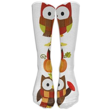 Owls Novelty Cotton Knee High All-Over Printed Socks Navy Blue
