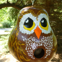 Owl Hand Painted Gourd Birdhouse Adorable Ollie Owl Designs by Sugarbear - So Sweet! CUSTOM ORDER Available