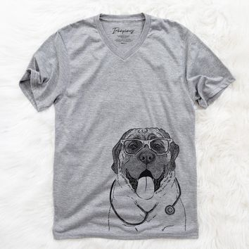 Remmie the English Mastiff  - Medical Collection