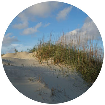 Paul Moore's Sand Dunes Circle Wall Decal
