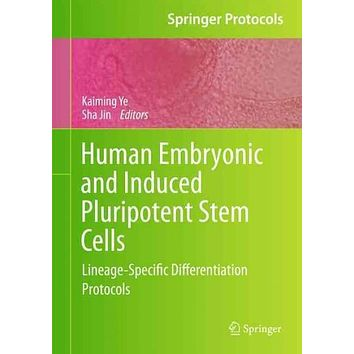 Human Embryonic and Induced Pluripotent Stem Cells: Lineage-Specific Differentiation Protocols (Springer Protocols Handbooks)