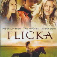 Flicka (Dvd/Wp/Sensormatic)