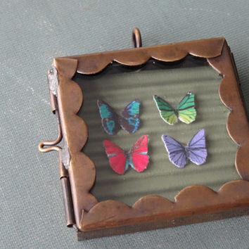 1- Butterfly Display Pendant Insect Specimen Shadow Box Ooak Miniature Butterflies Glass Locket