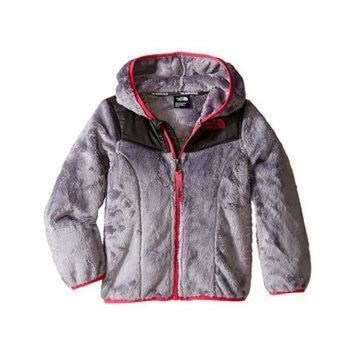 ICIKXI2 The North Face Kids Oso Hoodie (Toddler) Metallic Silver - Zappos.com Free Shipping BO