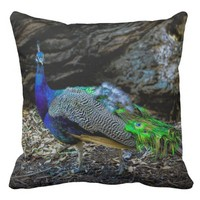 Beautiful peacock on a throw pillow