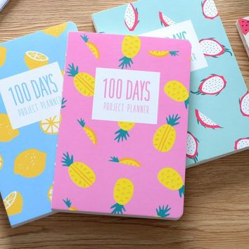 Lovely Korean fashion agenda 100 DAYS PROJECT PLANNER 128 pages 18.5*12.8cm retail free shipping 2017 students office gift