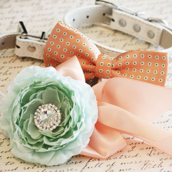 Peach and Mint Dog Collars,2 Dog Collars, Bow tie and Floral collar, Pet wedding accessory, Dog Lovers