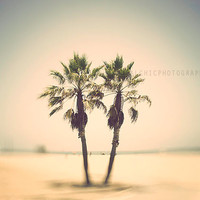 Venice Beach Palm Trees Motion Blur Los Angeles California Photography Summer Seaside