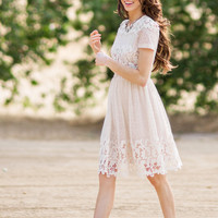 Julianne Cream Lace Dress