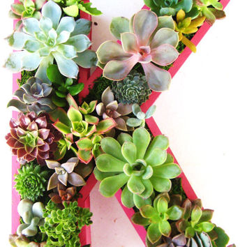 Mothers Day Succulent Monogrammed Planter Box As Seen In Southern Living Christmas at Home MADE TO ORDER