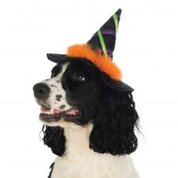 Halloween Witch Dog Hat with Feather Trim