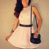 Mesh Striped Skater Dress (Pink)