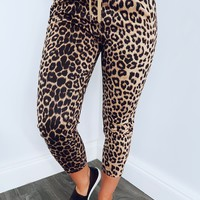 Airport Swag Pants: Cheetah