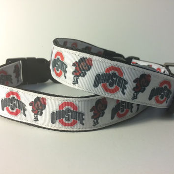 DOG COLLAR!! Ohio State Buckeye  dog collar