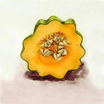 Acorn Squash Art Watercolor Painting Print Kitchen Decor Housewares Home Decor Christmas In July Fruit Kitchen Yellow 7.6 x 9.6 Under 25