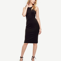 Knit Sheath Dress | Ann Taylor