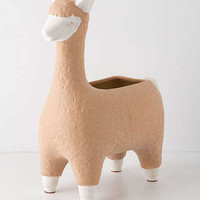 Anthropologie - Alpaca Garden Pot