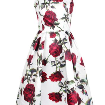 Streetstyle  Casual Round Neck Chic Floral Printed Sleeveless Skater Dress