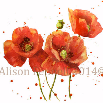 SALE, Watercolor POPPY Painting, original poppy painting, poppies