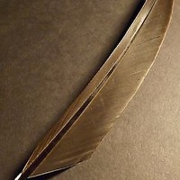 Beautiful goose feather quill pen, hand made from real feather, ready to write!