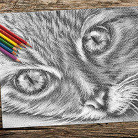 Cat Face coloring book pages, adult coloring book, coloring pages, adult coloring pages, coloring book for adults, printable coloring page