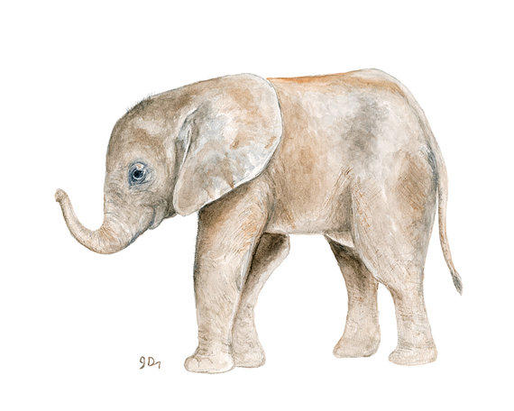 Animal Watercolor Painting Elephant From Jamesriverstudios On