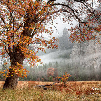 Large Yosemite Autumn Print, California Print, Tree Art, Yosemite Canvas, Fall Wall Decor, Fine Art, Misty Meadow, Yosemite Valley, Oak Art