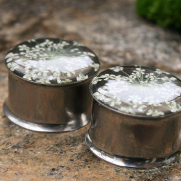 "Real Flower Plugs Queen Annes Lace in Resin for gauged ears custom size 9/16"", 5/8"", 3/4"", 7/8"",14mm, 16mm, 19mm, 22mm"