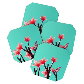 Deb Haugen North Shore Plumeria Coaster Set
