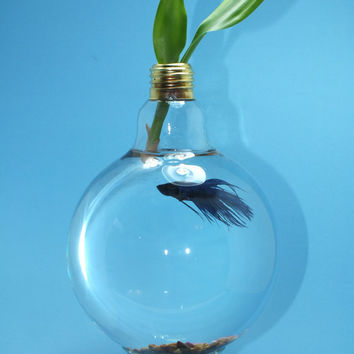 Reserved - Upcycled Light Bulb Fish Bowl Tank