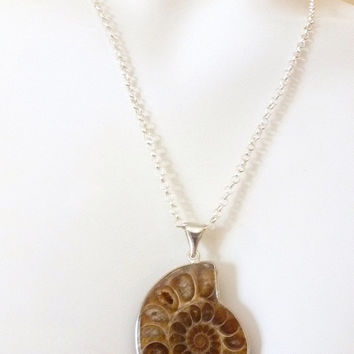 Fossilized Stone, Cephalopod Nautilus Jewelry, Ammonite Necklace, Natural Crystallization