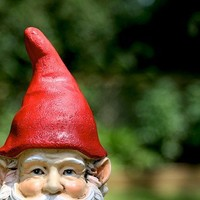 Sneaky Gnome - 8x10 Photographic Print
