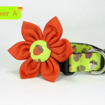 Autumn Green Acorn Flower  Dog Collar with Flower set  (Mini,X-Small,Small,Medium ,Large or X-Large Size)- Adjustable