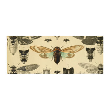 "Suzanne Carter ""Vintage Cicada"" Bugs Pattern Bed Runner"