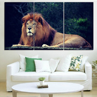 New Oil Painting Lion King Animal Landscape Wall Art Posters and Prints Home Decor Canvas Pictures for Living Room No Frame 3pcs