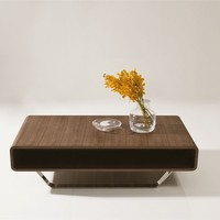 Modern Brown Coffee Table