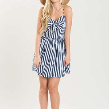 Erica Navy Striped Dress