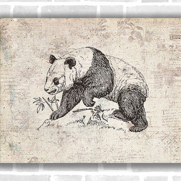 Vintage Panda Art, 10x8 Inch, Panda, Animals, Bears, Rustic Style Art, Home Decor, Kids Room, Dorm Decor