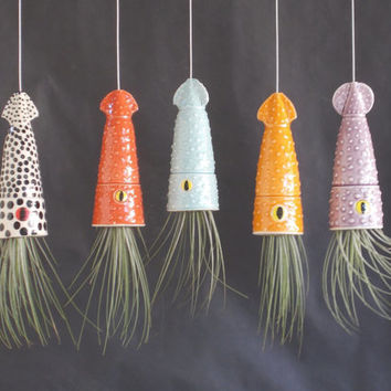 Air Planter, Hanging Planter, Mother's Day, Send a Squid,