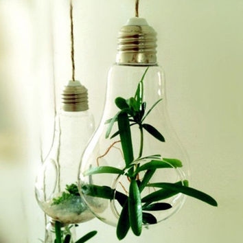 2016 New Glass Bulb Lamp Shape Flower Water Plant Hanging Vase Hydroponic Container Pot Home Office Wedding Decor