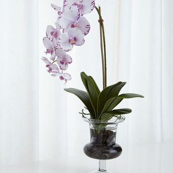 Natural Decorations Phalaenopsis Orchid Faux Floral